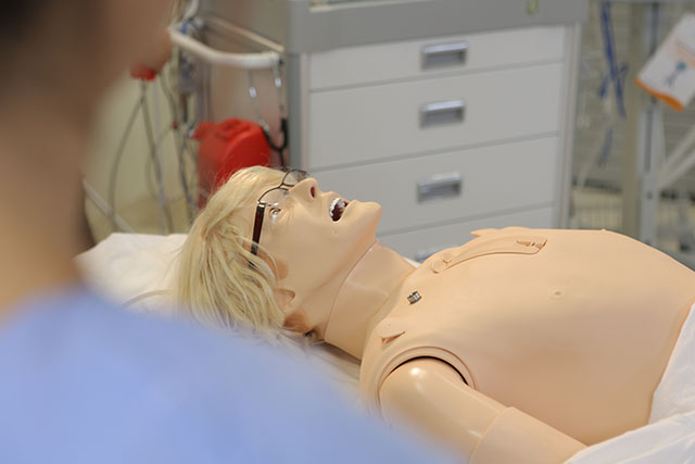 8ceaebf9e56 Mannequins | SWS Clinical Skills and Simulation